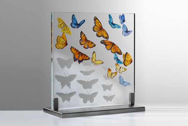 Butterfly Collection by Alison Kinnaird