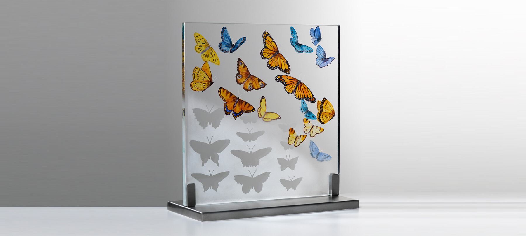Butterfly-Collection---web-quality---photo-Shannon-Tofts